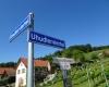 Eltendorf-gilt-als-Heimat-des-Uhudlers-c-Alexandra-Gruber